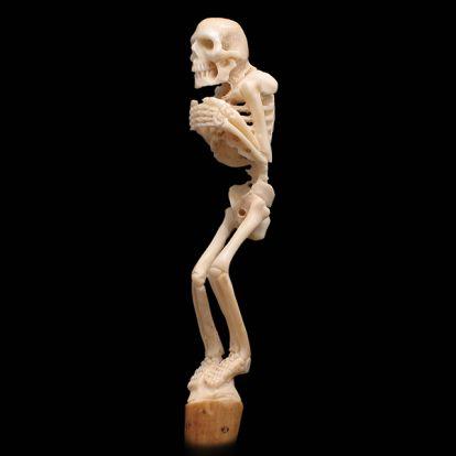 squelette miniature