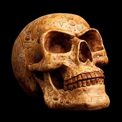 Alchemist skull