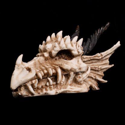 Coffret crane de dragon
