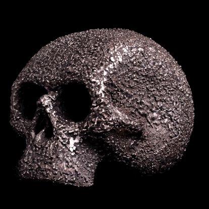 Crâne d'acier