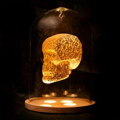 Crâne en dentelle luminescente