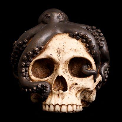 Octopus and skull