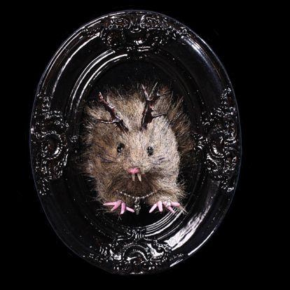 Trophée rat-dieu