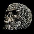 Screw skull